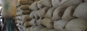 Kaffeelager der Kaffeekooperative